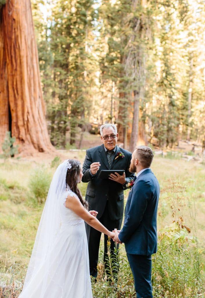 wedding ceremony at park