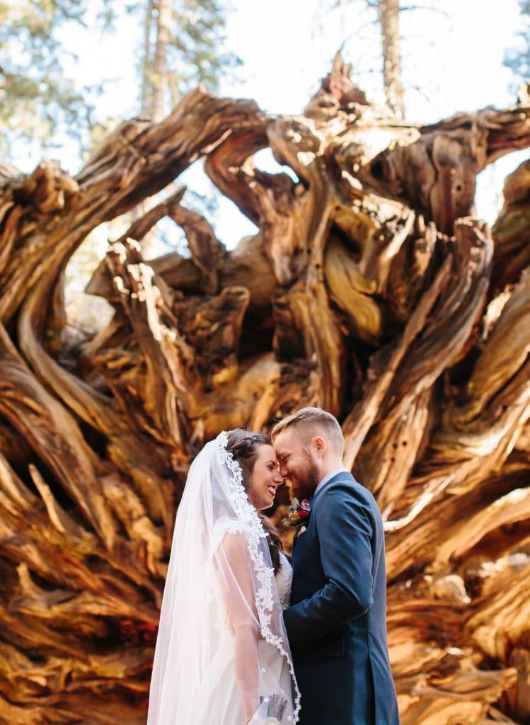 sequoia national park california elopement