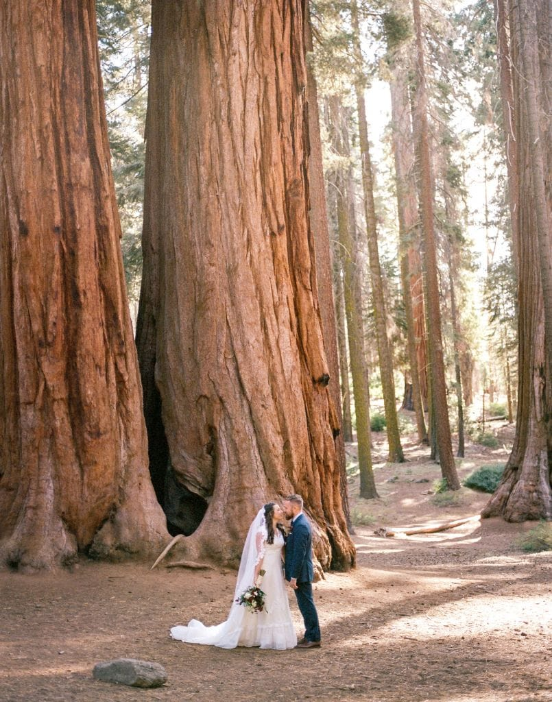 forest elopement photography