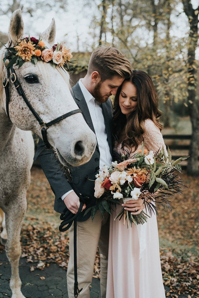 Extraordinary Engagement Session Featuring a White Horse in Dahlonega, Georgia