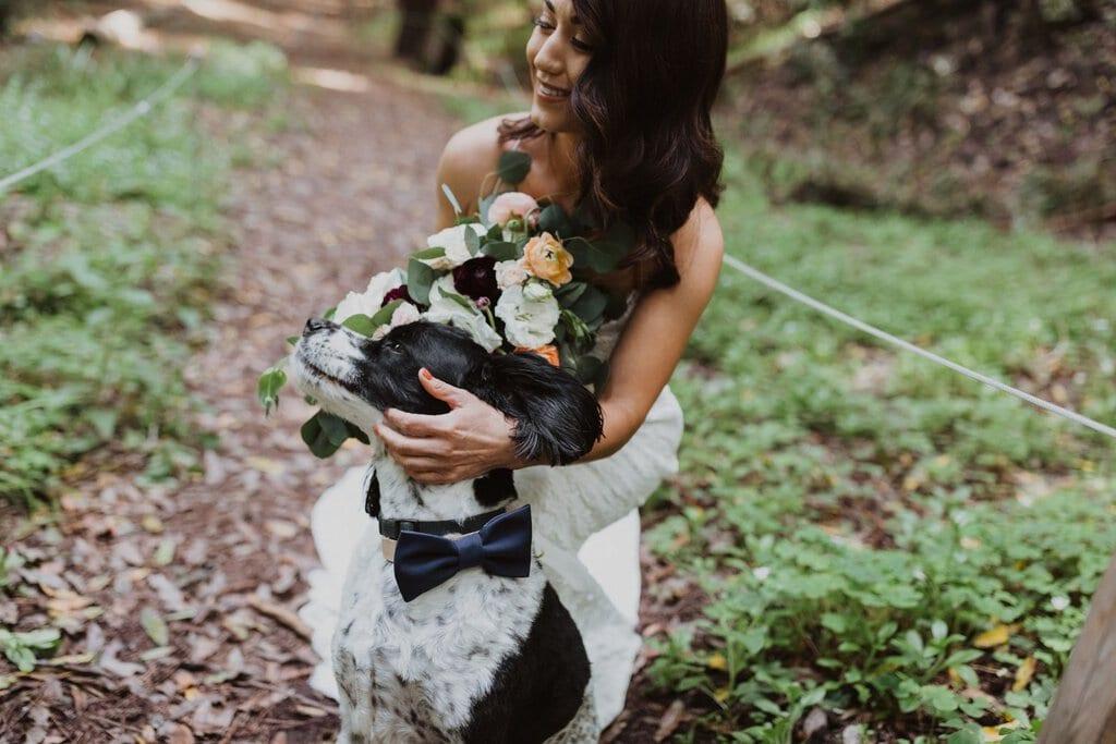 big sur california elopement forest wedding