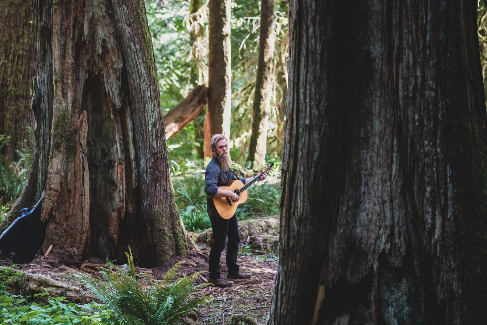 guitar player for intimate forest wedding.