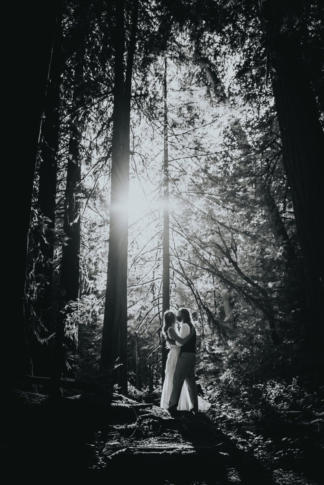 Intimate forest wedding in Vancouver Island