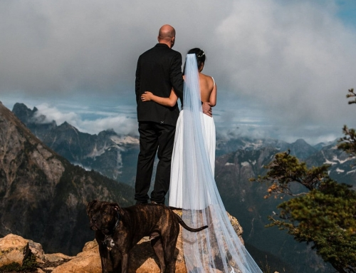 Mountain Wedding at Mount Baker Wilderness