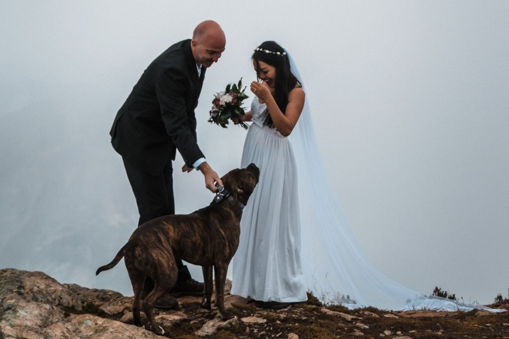 Bride and groom share first look moment with dog.