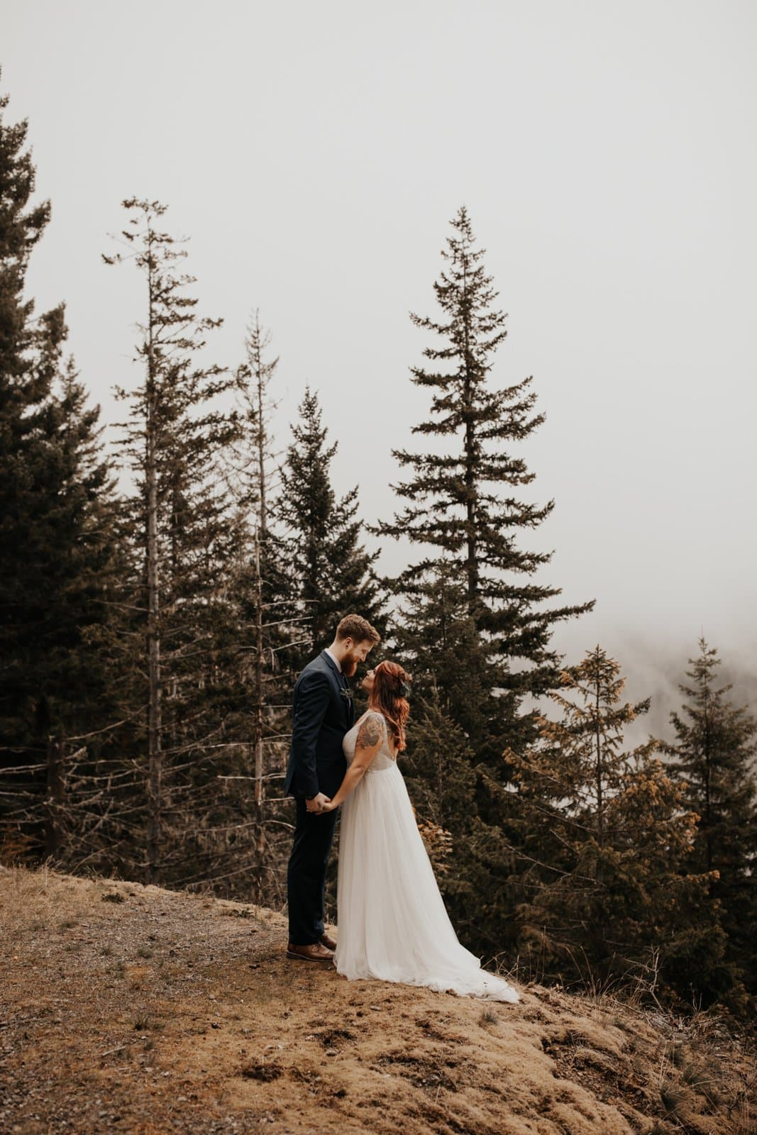 a couple getting married at hurricane ridge olympic national park