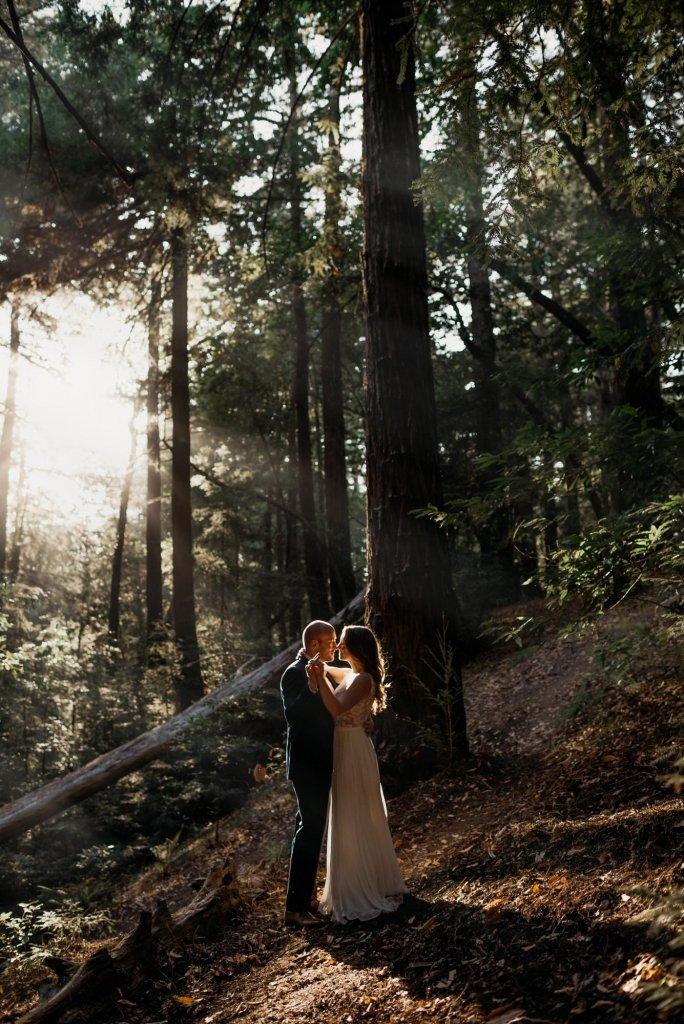 Big Sur redwoods portraits
