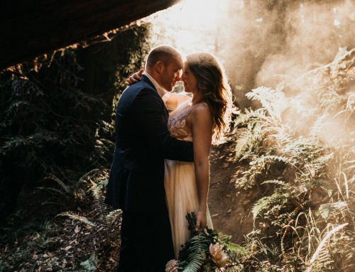 Romantic Big Sur Redwoods Elopement