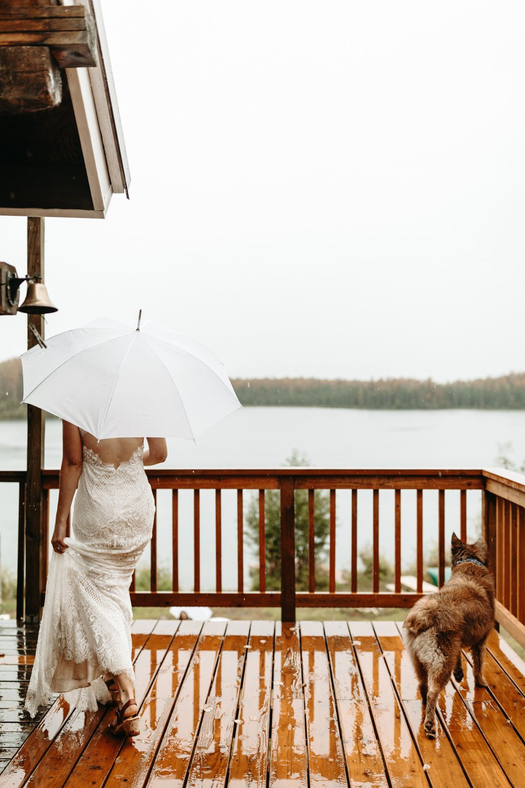 rainy elopement with pets