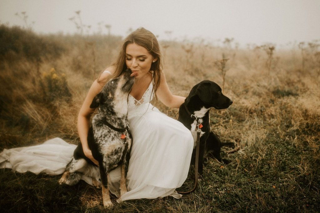 eloping with pets in Tennessee mountain