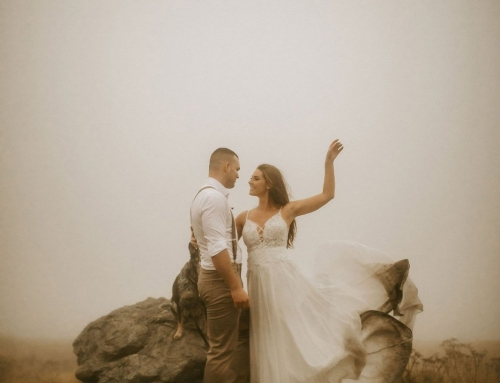 Foggy Roan Mountain Elopement in Tennessee