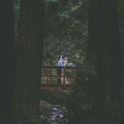 big-sur-redwoods-wedding-bridge-4