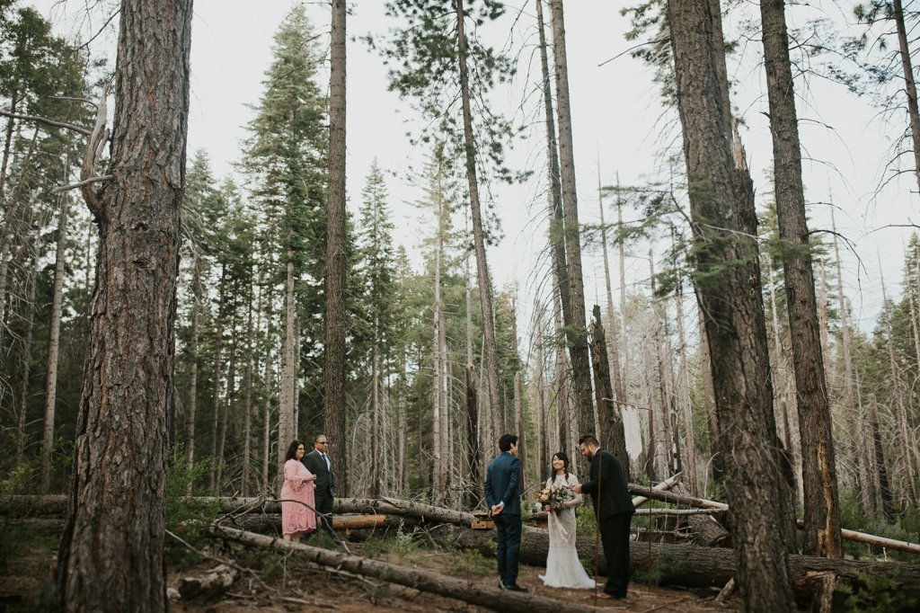 small wedding at Yosemite