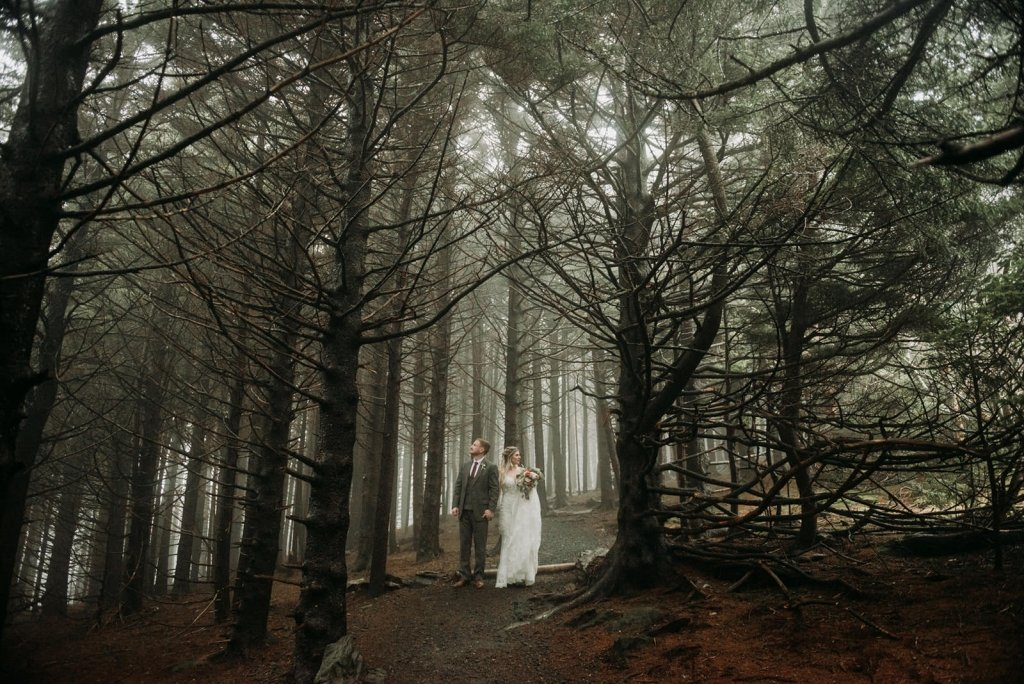 Roan mountain forest elopement experience for couples