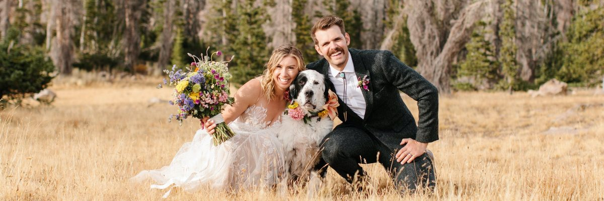 Uinta Mountains Wedding Adventure With Their Dog and Family